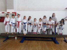 Karate klub Miloš Delić