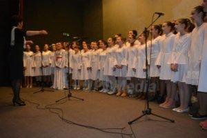 Svetosavska akademija u Bratuncu